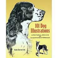 Vintage Reproduction: 101 Dog Illustrations - A Pictorial Archive of Championship Breeds by Gladys Emerson Cook