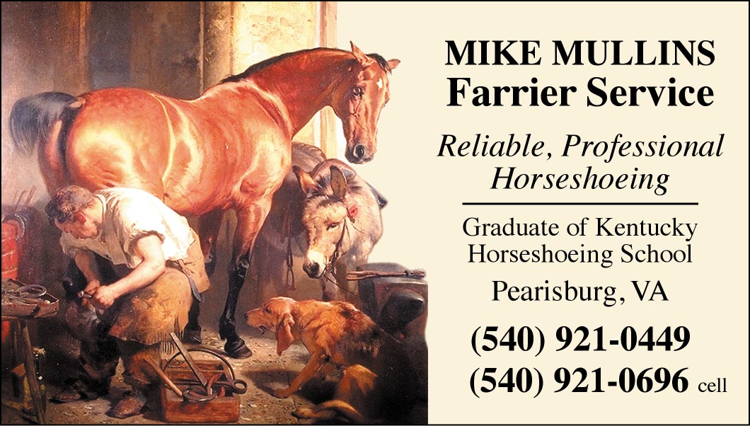 Custom Business cards- Landseer Shoeing design-www.hoofprints.com