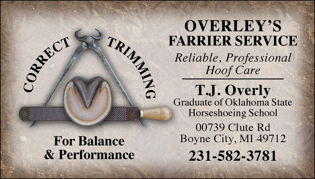 Custom Business Cards - Hoof Trimming Tools design-www.hoofprints.com