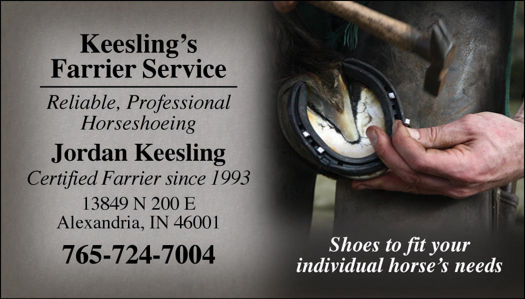 Custom Business Cards - Nailing Shoe design-www.hoofprints.com