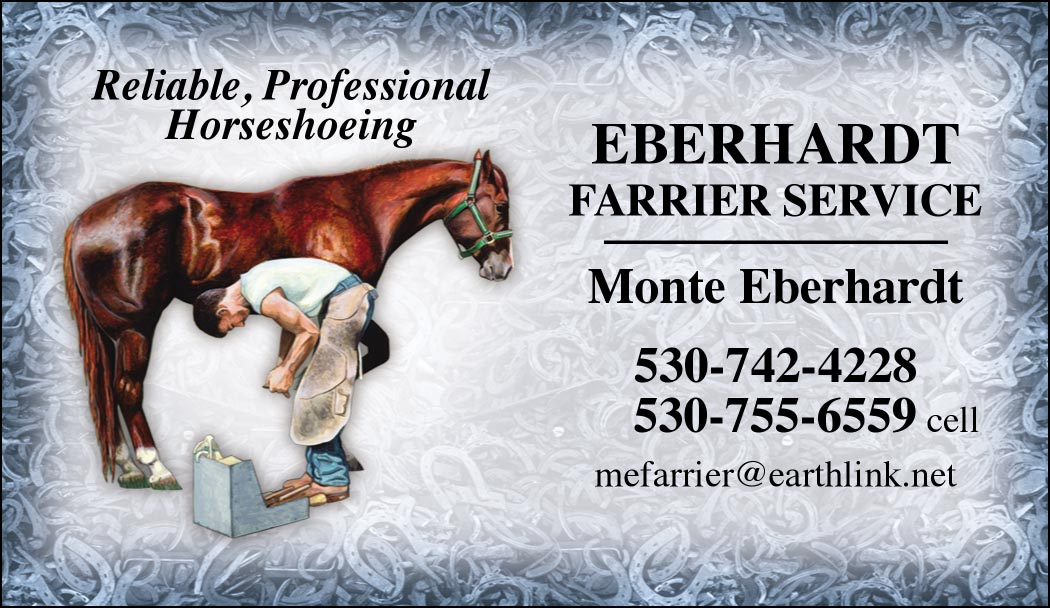 Custom Business cards- Modern Farrier design-www.hoofprints.com