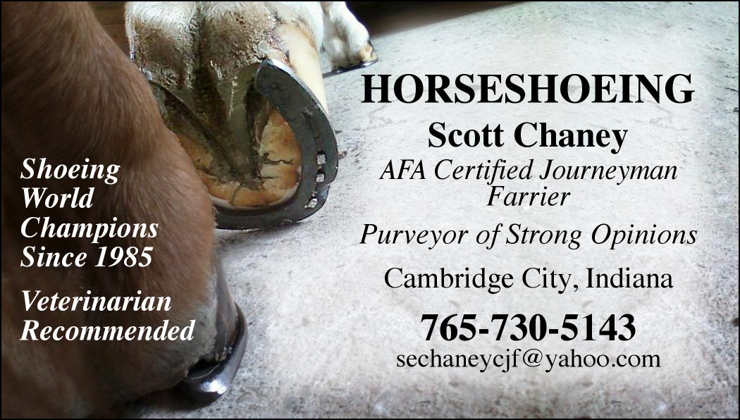 Horseshoeing Business Cards - Best Horse 2017