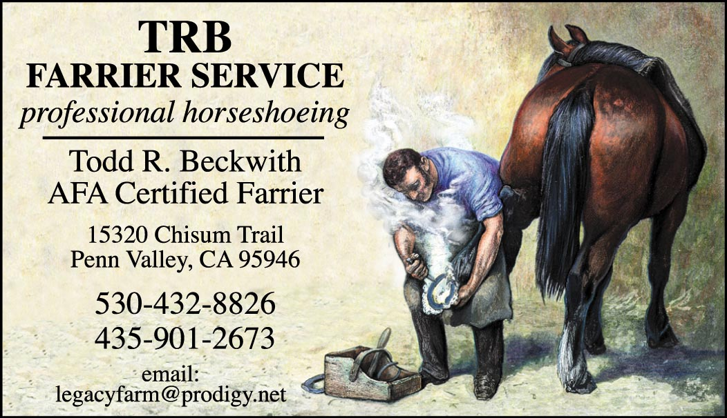 Custom Business cards- Engraved Farrier design-www.hoofprints.com