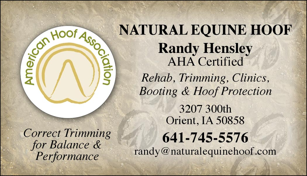 Custom Business cards- American Hoof Association Logo design-www ...