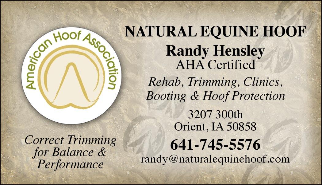 Custom business cards american hoof association logo design www custom business cards american hoof association logo design colourmoves