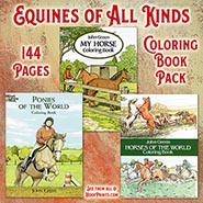 Coloring Books Fun Pack - Includes one each Horses of the World, Ponies of the World & My Horse