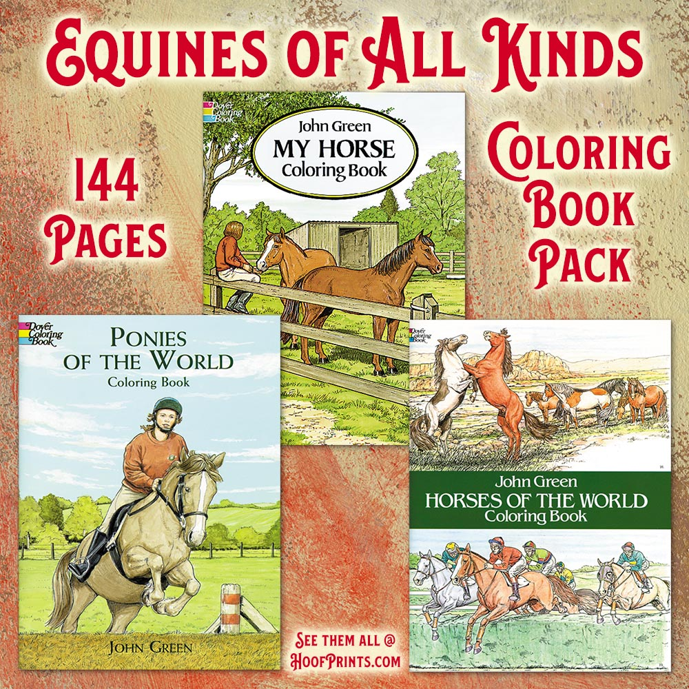 Coloring Books Fun Pack - Includes one each Horses of the World ...