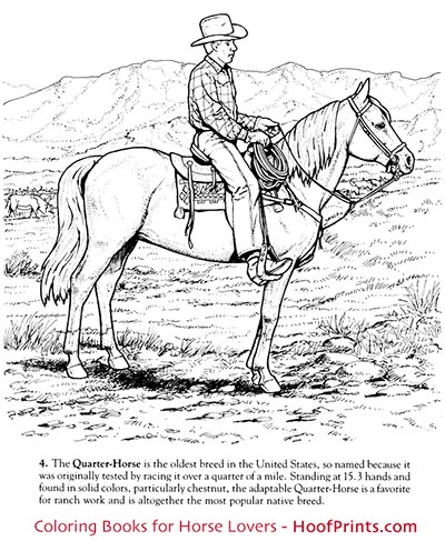 Horses Of The World Coloring Book Loading Zoom