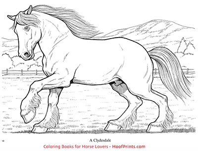 Wonderful World of Horses Coloring Book - www.hoofprints.com