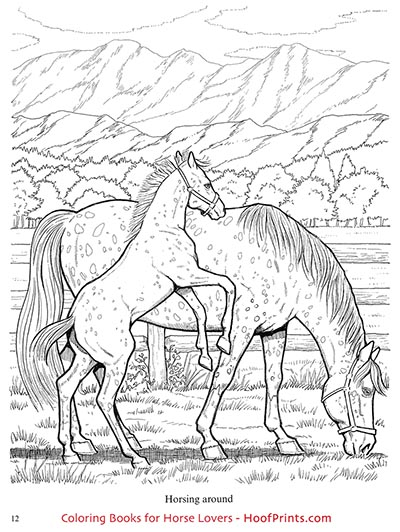 Wonderful World of Horses Coloring Book-www.hoofprints.com