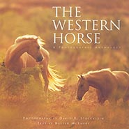 The Western Horse Coffee Table Book - A Photographic Anthology by David Stoecklein