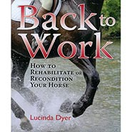 Back to Work: How to Rehabilitate or Recondition Your Horse by Lucinda Dyer ONLY ONE AVAILABLE