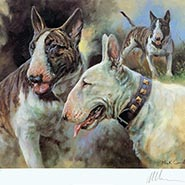 FRAMED Bull Terriers Limited Edition Print by Mick Cawston VERY RARE ONLY ONE AVAILABLE