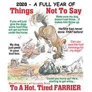 2020 Things Not To Say To A Farrier Magnetic Business Card Calendar