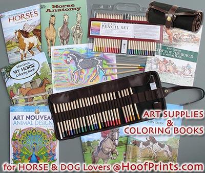 Horse Anatomy Coloring Book wwwhoofprintscom