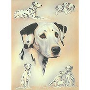 Dalmatians by Libero Patrignani ONLY ONE AVAILABLE