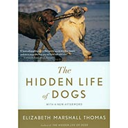The Hidden Life of Dogs by Elizabeth Marshall Thomas - ONLY ONE AVAILABLE