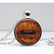 Glass Dome Horse Eye Necklace
