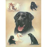 Labradors by Libero Patrignani ONLY ONE AVAILABLE
