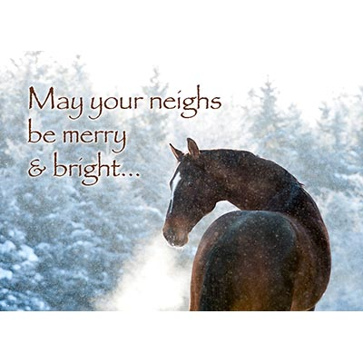 May your neighs be merry and bright Card