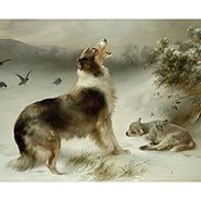 Found - collie and lamb print by Walter Hunt