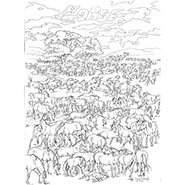 100 Horses Coloring Poster