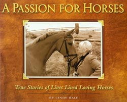 A Passion For Horses
