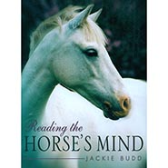 Reading The Horse's Mind by Jackie Budd  - ONLY ONE AVAILABLE
