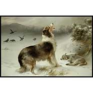 Found - collie and lamb print by Walter Hunt - READY TO HANG PLAQUE
