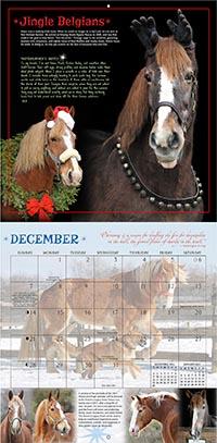 Horses and Hope 2014 Calendar