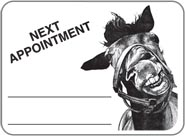 Horse Face Sticker