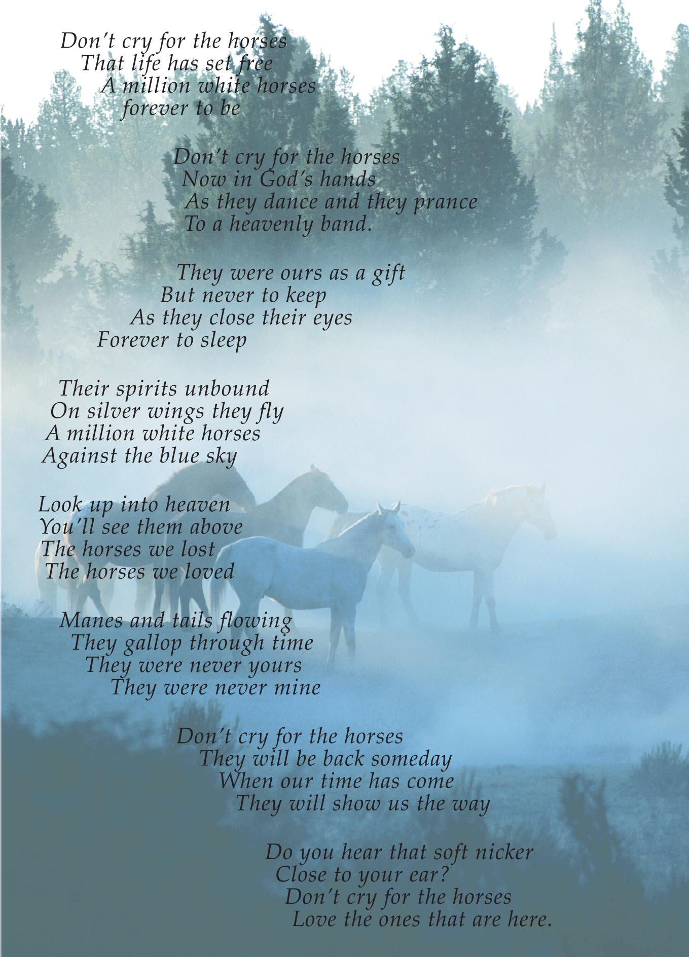 Pkg Of 6 Sympathy Cards Dont Cry For The Horses Verse Hoofprints