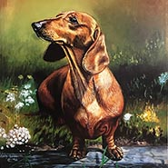 Sitting Pretty Dachshund Print by Gina Leone ONLY ONE AVAILABLE