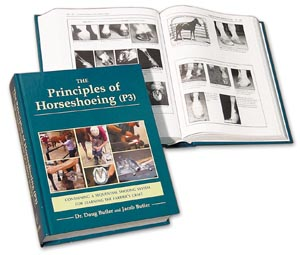 Book Principles (P3)