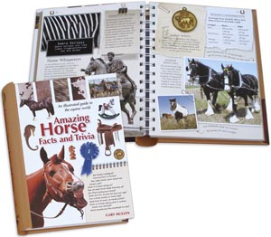 Horse Facts Book