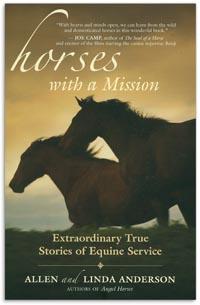 Women Needs a Horse Book