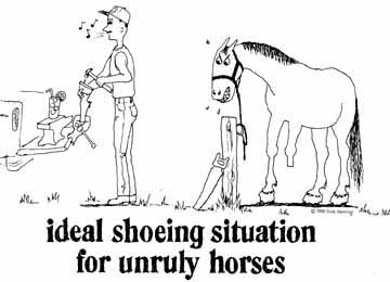 Ideal Shoeing Situation
