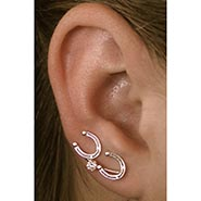 Horseshoe Earrings Small