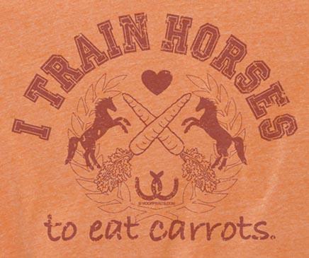 I Train Horses