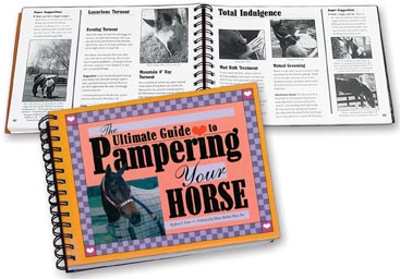 Pampering Your Horse