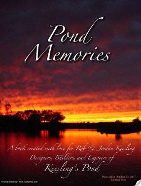 Pond Memories