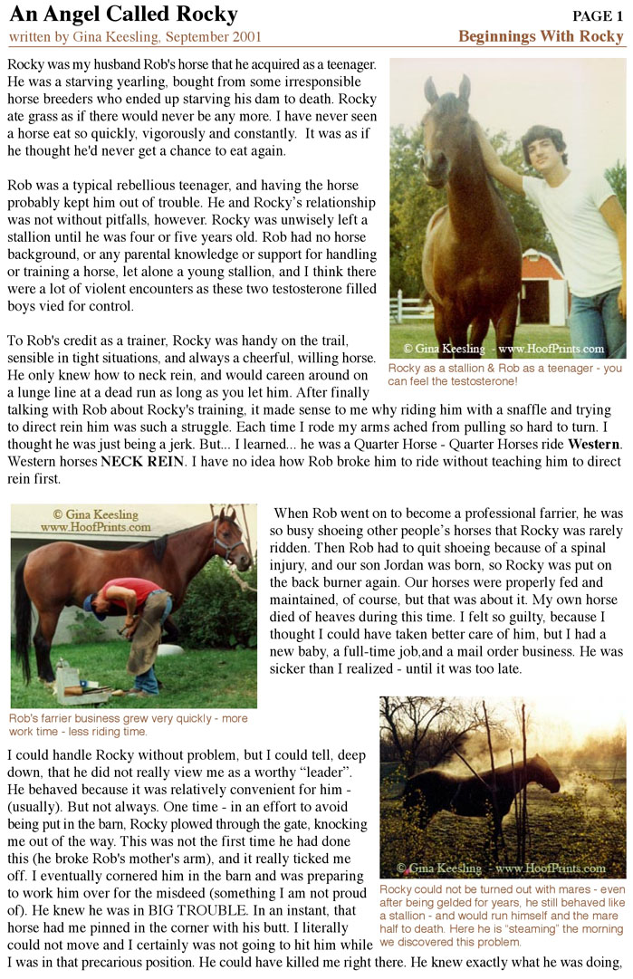 Rocky Story - Page 1