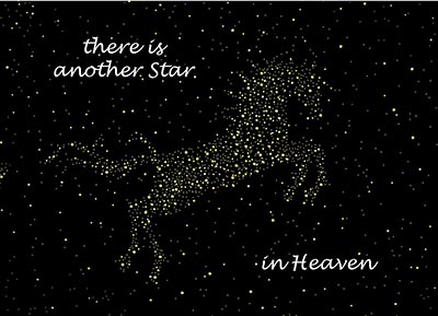 Star in Heaven